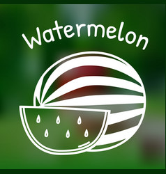 thin line watermelon icon vector image vector image