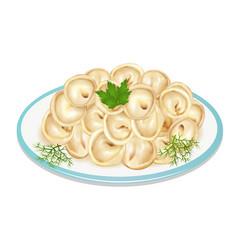 boiled dumplings on a plate vector image