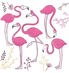 Set of funny hand drawn flamingos vector image