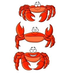 Happy red ocean cartoon crabs with large claws vector