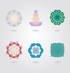 Mini Mandalas icons set vector image vector image