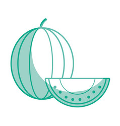 Silhouette delicious slice watermelon fruit with vector