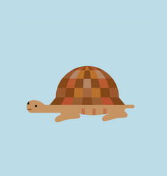 turtle flat style icon vector image