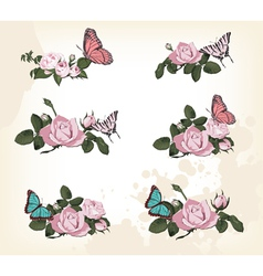 Roses with butterflies vector