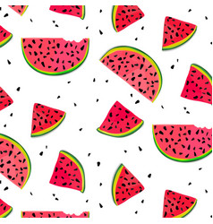 Watermelon parts food slices of red summer vector