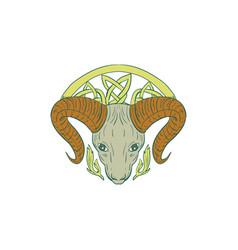 Ram head celtic knot vector