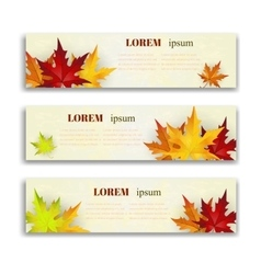 Set of three banners with colorful autumn vector