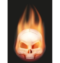 Human skull head with flame vector