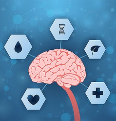Brain and medical assistance vector image vector image