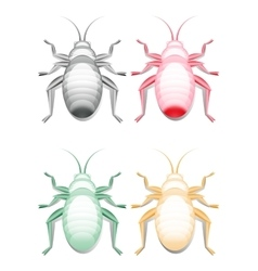 Colored bugs images vector image