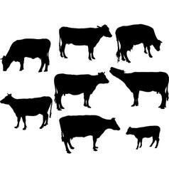 Cows and calf bw vs vector