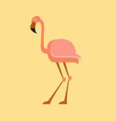Flamingo flat icon vector