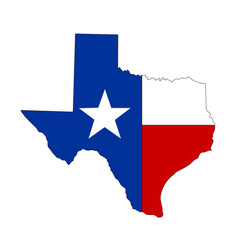 Texture texas state icon vector