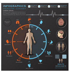Biological clock health and medical infographic vector