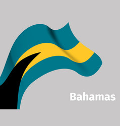 background with bahamas wavy flag vector image vector image