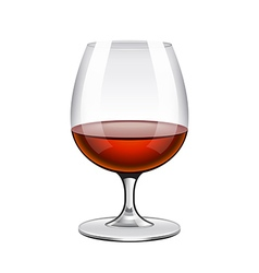 Brandy in glass isolated on white vector