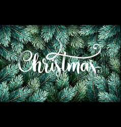 fir branches with handwriting lettering vector image vector image
