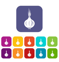 onion icons set vector image vector image