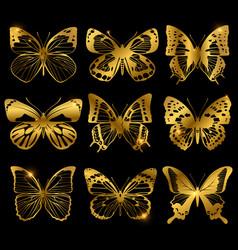 Shiny golden butterflies with light effect vector