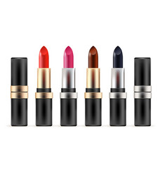 lipstick collection vector image