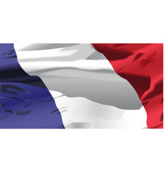 France flag waving vector