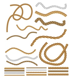 Rope brushes vector