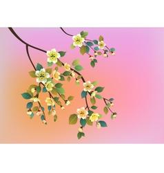 Sakura postcard menu vector