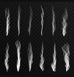 smoke waves set on transparent background vector image vector image