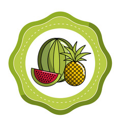 Sticker watermelon and pineapple fruit icon vector
