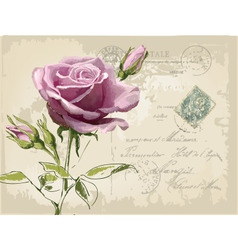 vintage postcard with beautiful rose handdrawing vector image vector image