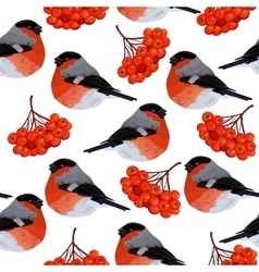 Seamless pattern with rowan and bullfinches vector