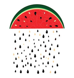 Watermelon rain fresh slices background vector