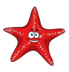 Cartoon tropical red starfish character vector