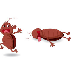 Cockroach cartoon expression vector