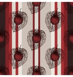 seamless vertical pattern with physalis seed vector image