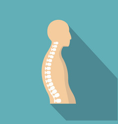 human spine icon flat style vector image