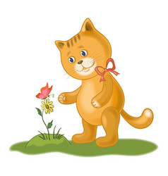 Cat flower and butterfly vector