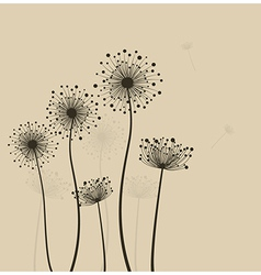 Sylized dandelions vector image