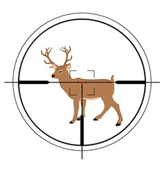 Deer hunting targer vector