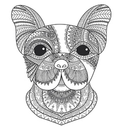 French bulldog coloring vector image vector image