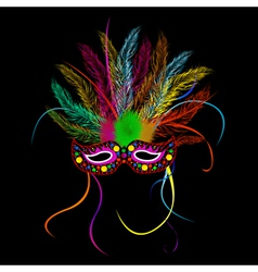 Mardi grass party mask vector