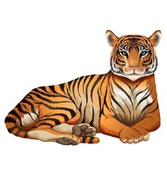 A tiger vector