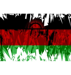 Flag of Malawi vector image vector image