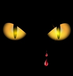 Yellow eyes and drops vector