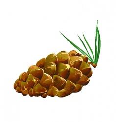 pinecone fallen vector image