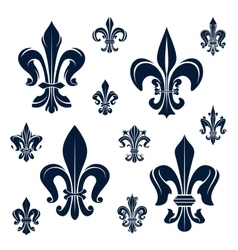 French fleur-de-lis heraldic symbols and flowers vector