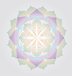 Flower of Life design vector image