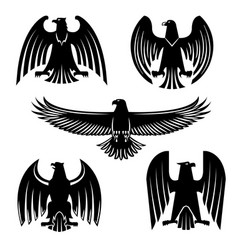 Black eagle hawk or falcon heraldic symbol set vector