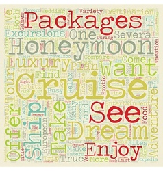 Take an Unforgettable Dream Honeymoon Cruise text vector image