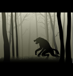 werewolf in the dark woods vector image